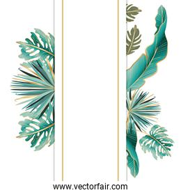 Isolated tropical green leaves vector design