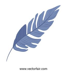 Isolated tropical blue leaf vector design