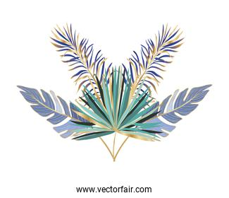 Isolated tropical green and blue leaves vector design