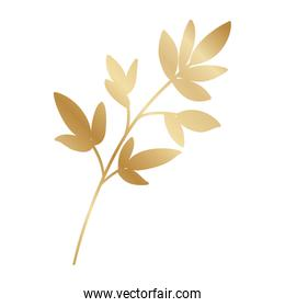 Isolated gold leaf plant vector design