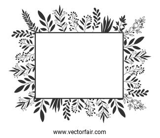 Isolated leaves frame vector design