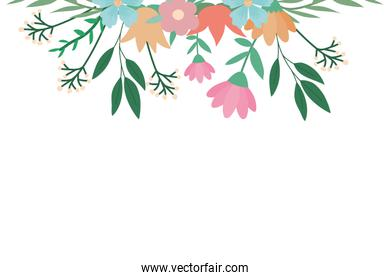 Isolated flowers and leaves vector design