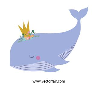 Cute whale with crown vector design