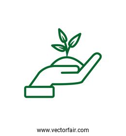 Isolated hand holding plant vector design