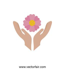 Isolated pink flower and hands vector design