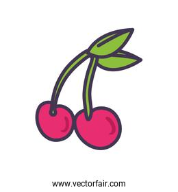 Isolated cherry fruit line and fill style icon vector design