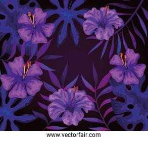 background of flowers purple with tropical leafs