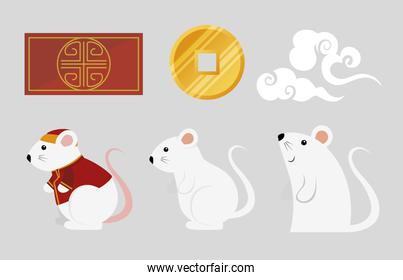 set of icons decoration happy new year chinese 2020