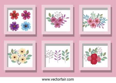 bundle of designs of flowers and leafs