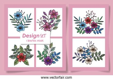 six designs of flowers with leaves naturals