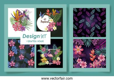 bundle of designs flowers and leafs tropicals