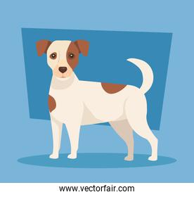 cute spotted dog animal icon