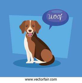 cute dog with speech bubble