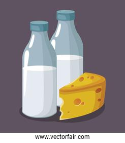 milk bottles and piece of cheese