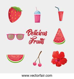 Isolated fruits icon set vector design