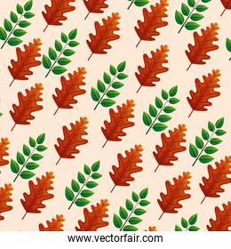 background of leafs lobado and branches with leafs