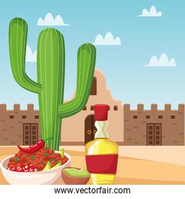Mexican food and tequila vector design