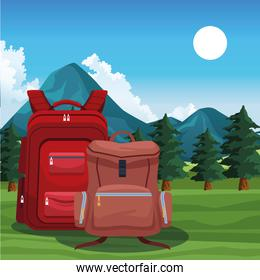 Beautiful mountains and trees landscape with backpacks