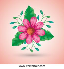 pink flower and leaves vector design