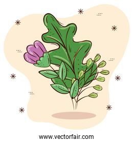 Isolated purple flower and leaves vector design