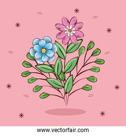 Flowers with leaves over pink background vector design