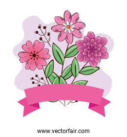 Flowers with leaves and ribbon vector design
