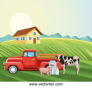 farming house pickup tractor cow pig milk canister field landscape