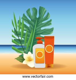 summer time in beach vacations sunblock bottles flower leaves exotic