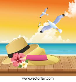 summer time in beach vacations hats flowers seagull leaves