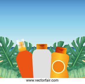 summer time in beach vacations bottle creams sunblock foliage palm monstera