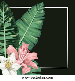 flowers hibiscus leaf palm tropical banner black background