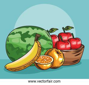 fresh fruit watermelon orange banana and basket with apples food healthy