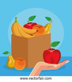 box with healthy fruits and hand holding a apple, colorful design