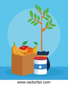 plant, donation tin and box with fruits, colorful design