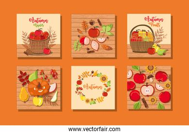 set of autumn posters with decoration