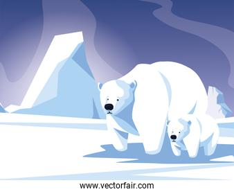 polar bear with cub at the winter landscape, mother and child