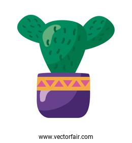 cactus mexican plant detaild style icon