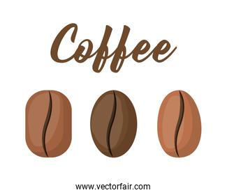 Style coffee beans vector design