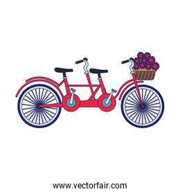 classic double bike with basket with flowers