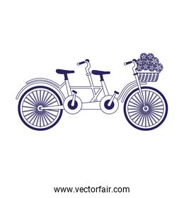 classic double bike with basket with flowers, flat design