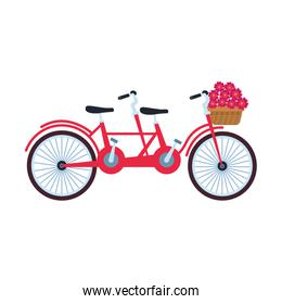 classic double bike with basket with flowers, colorful design