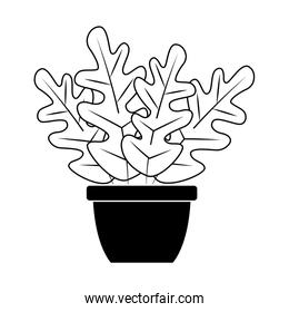 beautiful plant in a pot icon, flat design