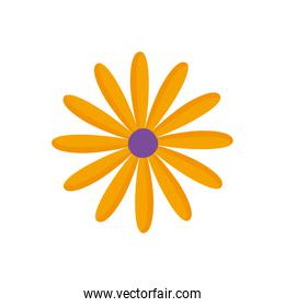 yellow flower decoration over white
