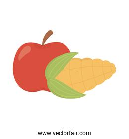 apple and corn cob food design on white background