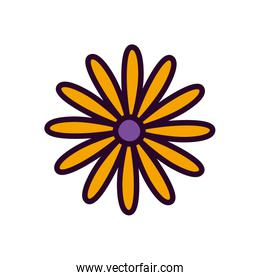 yellow flower decoration on white background