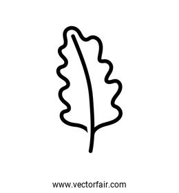 leaf foliage nature on white background thick line
