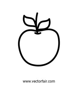 apple fruit fresh on white background thick line