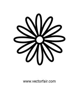 flower decoration on white background thick line