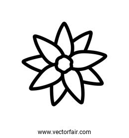 flower decoration nature on white background thick line