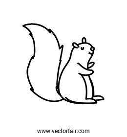 cute squirrel animal forest icon